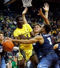 Denver Nuggets pick up Bol Bol from ...