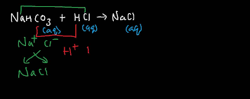 net ionic equation for sodium hydrogen