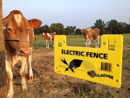 Kf 3621 Electric Fencing Fence Information Gallagher Electric Fence Schematic Wiring