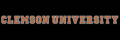 Clemson Tigers 22 Strip Decal Upstate Tailgate Inc