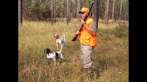 Rat hunting dog breeds ...