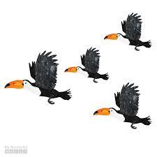 My Wonderful Walls 4 Piece Flying Toucan Bird Wall Decal Set Wayfair