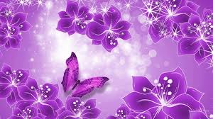 purple wallpapers for puter