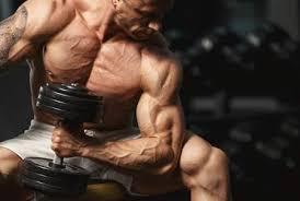 indian t plan for bodybuilding veg