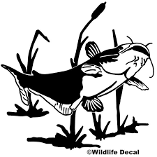 Catfish In Weeds Decal Md Window Boat Stickers Wildlife Decal