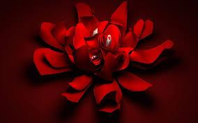 خلفيات ورد احمر بحث Google Red Flower Wallpaper Flower