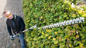 20 Hedge Trimmer Attachment For Multi Head System By Ego Power