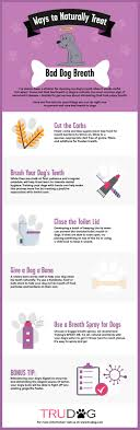 bad breath stinks and how to fix