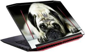 Gadgets Wrap Printed Pug Dog Skin For Vinyl Laptop Decal 15 6 Price In India Buy Gadgets Wrap Printed Pug Dog Skin For Vinyl Laptop Decal 15 6 Online At Flipkart Com