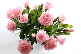 Fleurs rose Sonia rose roses décor Floral Roses fleurs de | Etsy