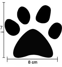 6 X Large Cat Dog Paw Print Vinyl Wall S Buy Online In Bosnia And Herzegovina At Desertcart