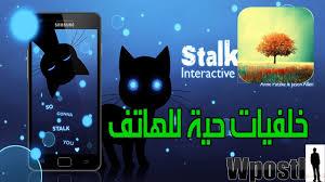 تطبيقات خلفيات هاتف متحركة ذكية متفاعلة معك Stalker Cat Live