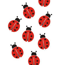 Ladybugs Wall Vinyl Decals Art Graphics Stickers Vinyl Wall Decals Ladybug Ladybug Decorations