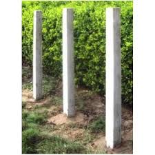 Concrete Fencing Pole At Rs 240 Piece Fence Pole Id 12839466488