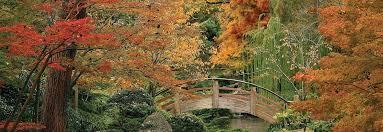 fort worth botanic gardens things to