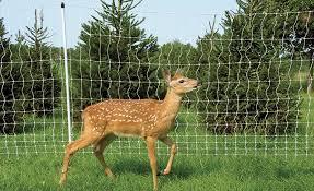 Anti Deer Fence Premier1supplies