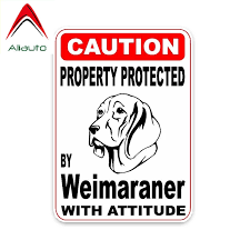 Aliauto Caution Car Sticker Property Protected By Weimaraner Dog Decal Cover Scratches For Honda Crv Vw Passat B5 Bmw 14cm 10cm Car Stickers Aliexpress