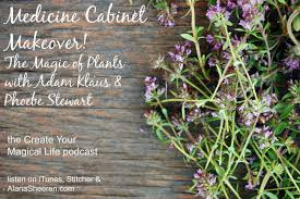 Plants and Herbs to Heal and Restore Your Skin with Adam Klaus and Phoebe  Stewart |