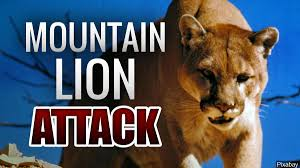 Woman tries to pry open mountain lion's jaws to save her dog