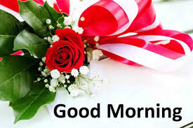 good morning images free 2019