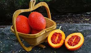 Công dụng chữa bệnh và làm đẹp bất ngờ của trái gấc