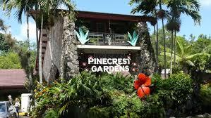 miami pinecrest gardens un des plus