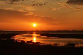 Marismas del rio Odiel a su paso por Huelva por carmelo ...