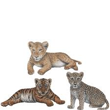 Lion Leopard Tiger Cub Combo Pack Jungle Animal Wall Stickers