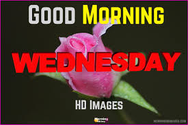good morning wednesday hd images top