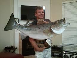 lake lanier fishing forum