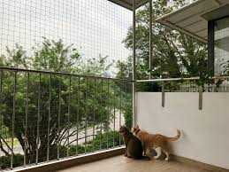 Cat Safety Cat Proof Your Balconies The Cat People Sg