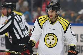 Örebro Hockey värvar poängkungen Aaron Palushaj från Brynäs – Örebro Tribune