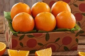 health citrus