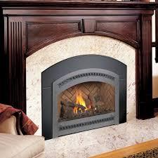 ferguson s fireplace stove center