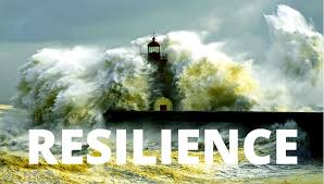 Image result for childhood trauma and resilience