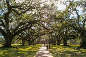 days in new orleans itinerary