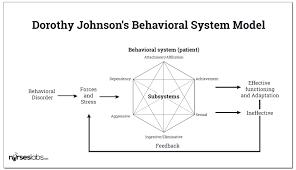 Dorothy Johnson: Behavioral System Model