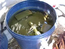 pond homemade bio filter part 5 you
