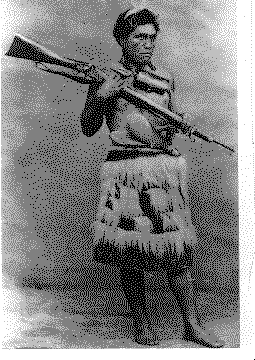 Image result for maori warrior with gun""