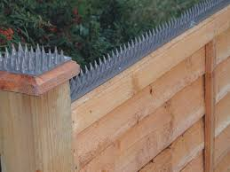 Cat Proof Garden Ideas Cat Fence Plastic Spikes Security Fence Home Security Tips Home Safety