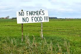 Farmers show anger with EU wide protests