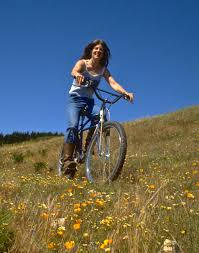 Wildflowers on Wheels: Mysteries of wildflowers revealed and how to bike to  themMCBC