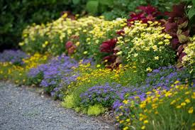 best garden border ideas diy network