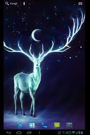 night bringer magic glowing deer live
