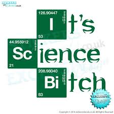 It S Science Bitch V2 Breaking Bad Vinyl Sticker Wall Decal