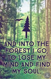 quotes about lost in nature quotes