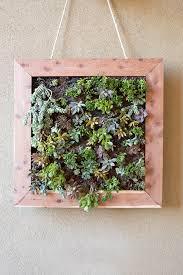 vertical succulent garden tutorial