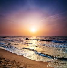 الفينيل عودة قطرة التصوير خلفية شاطئ الغروب مشهد الزفاف الرقمية