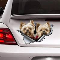 Ohiodecals Com Maltipoo On Board Funny Dog Breed Decal Sticker For Car Or Truck Window Wish