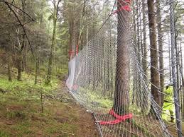 Catch Fences Using Trees As Posts Download Scientific Diagram